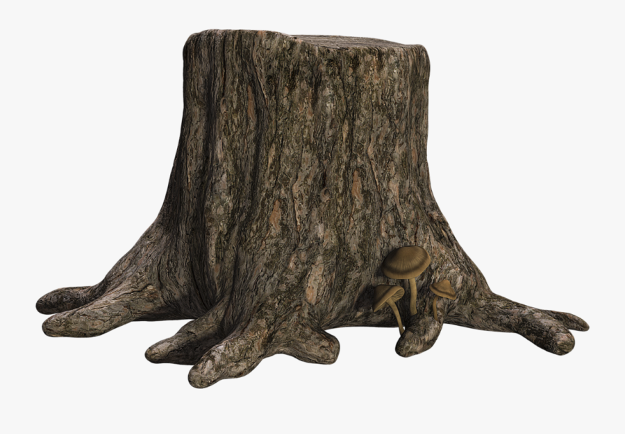 Tree Trunk With Transparent Background , Transparent - Tree Stump Transparent Background, Transparent Clipart