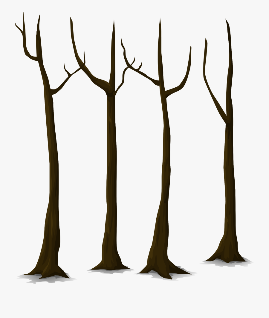 Tree Dead Trunk Nature Leaves Png Image - Tree Trunk Vector Png, Transparent Clipart