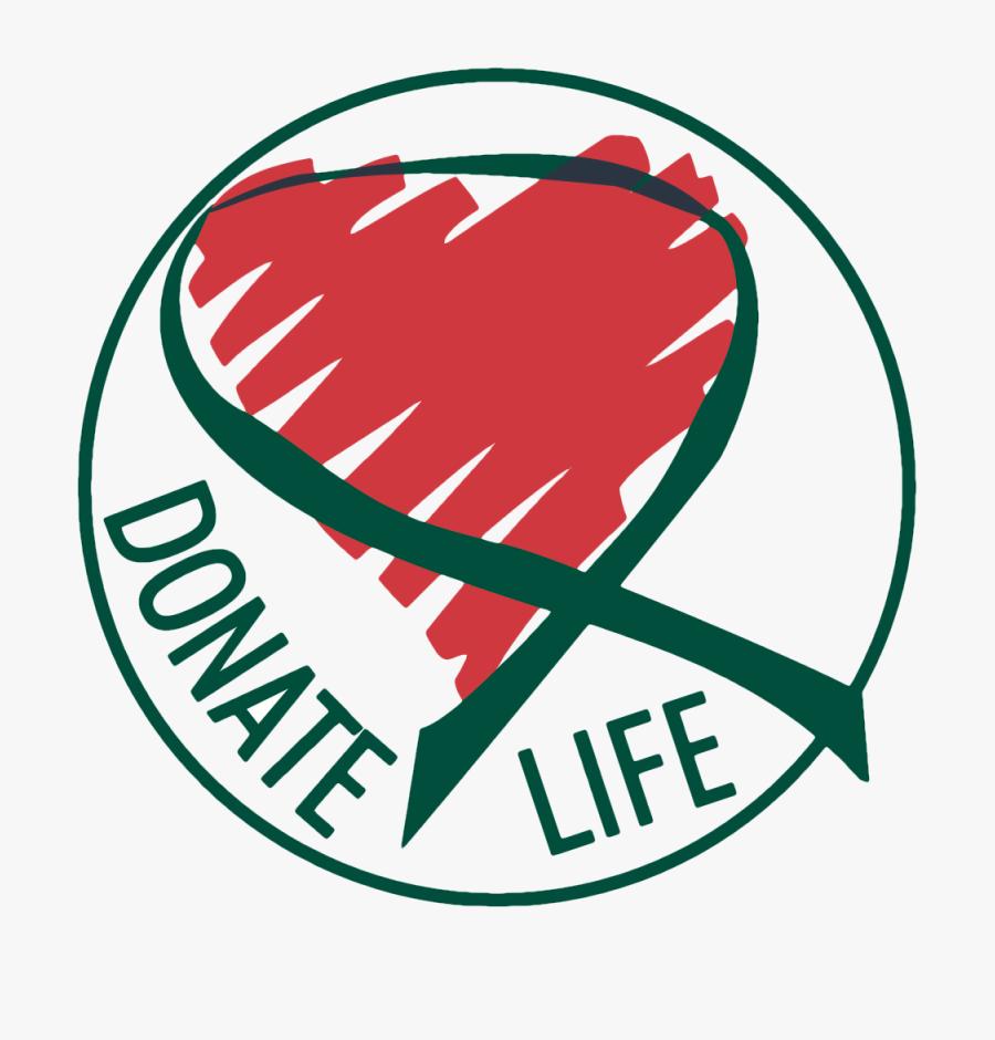 Transparent Organ Png - Organ And Tissue Donation Alberta, Transparent Clipart