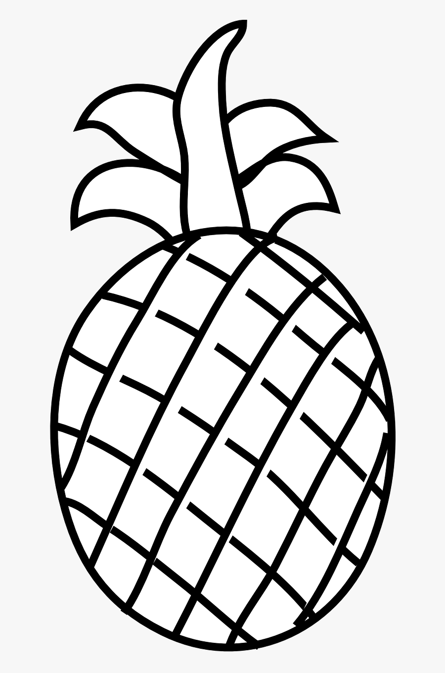 Transparent Pineapple Clipart Black And White - Pineapple ...