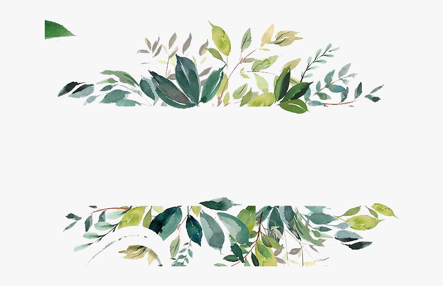 Eucalyptus - Transparent Background Watercolor Leaves, Transparent Clipart