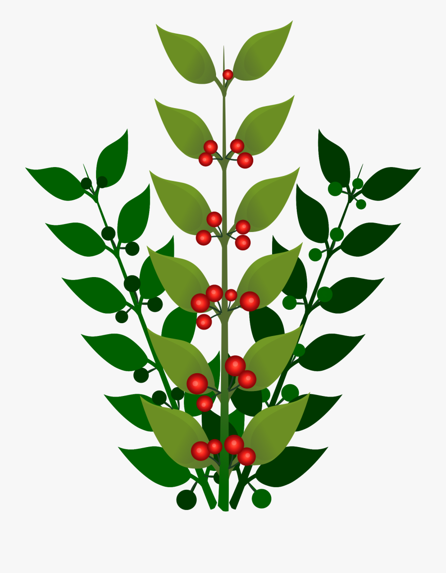 A Simple Branch With Berries Clip Arts - Berry Bush No Background, Transparent Clipart