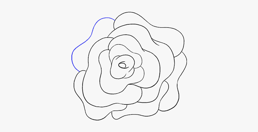How To Draw A Rose Flower Easy Drawing Guides - Rose Flower Transparent Draw, Transparent Clipart
