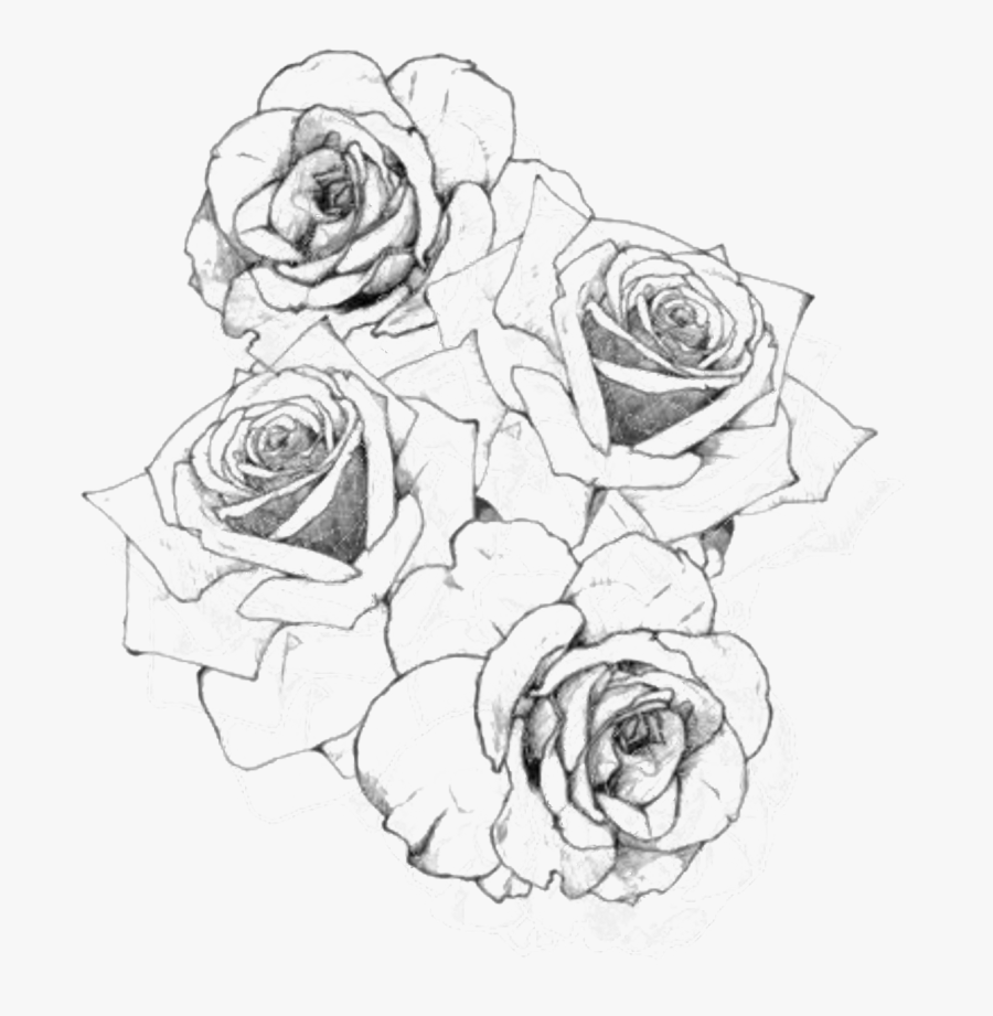 Transparent Rose Png Hard Drawings Of Flowers Free Transparent Clipart Clipartkey