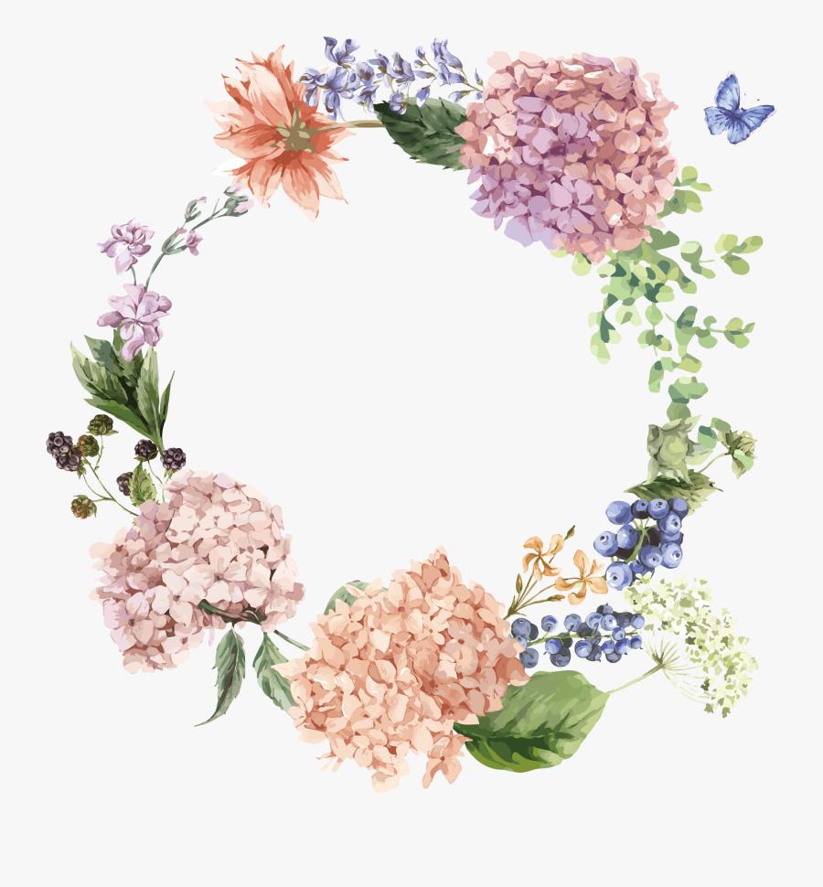Hydrangea Flower Drawing Illustration - Hydrangea Flower Drawing, Transparent Clipart