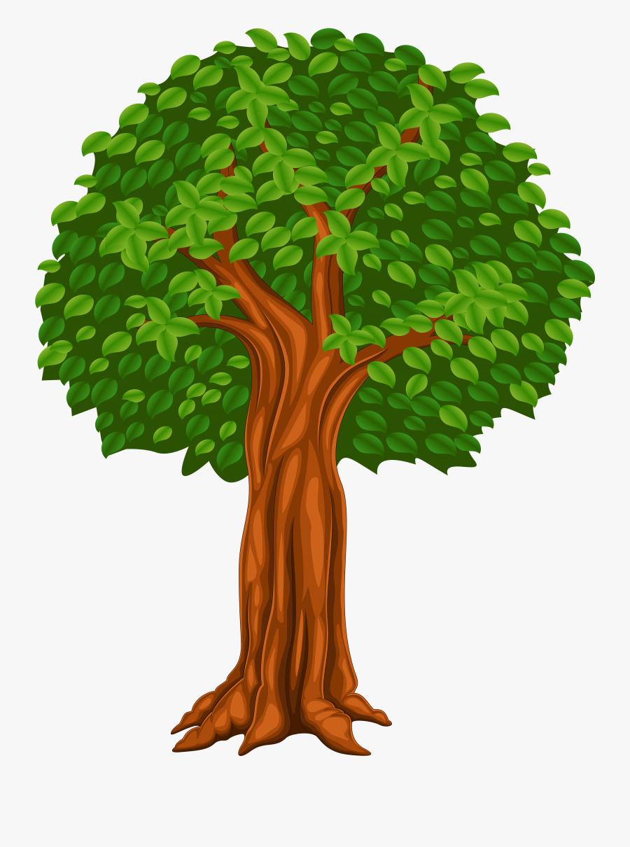 Cartoon Trees Png - Transparent Background Tree Cartoon ... (900 x 1210 Pixel)
