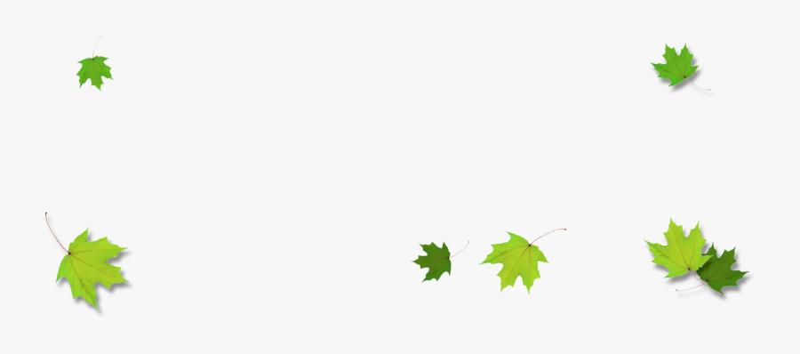 Leaves Border Png - Maple Green Leaf Border, Transparent Clipart