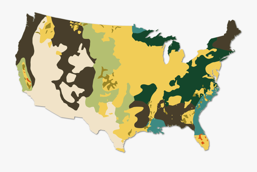 Cropscape Data Layer National Processed And Smoothed - United States Resources Map, Transparent Clipart