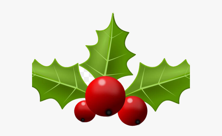 Holly Leaf Portable Network Graphics Clip Art Free - Transparent Background Bough Of Holly, Transparent Clipart