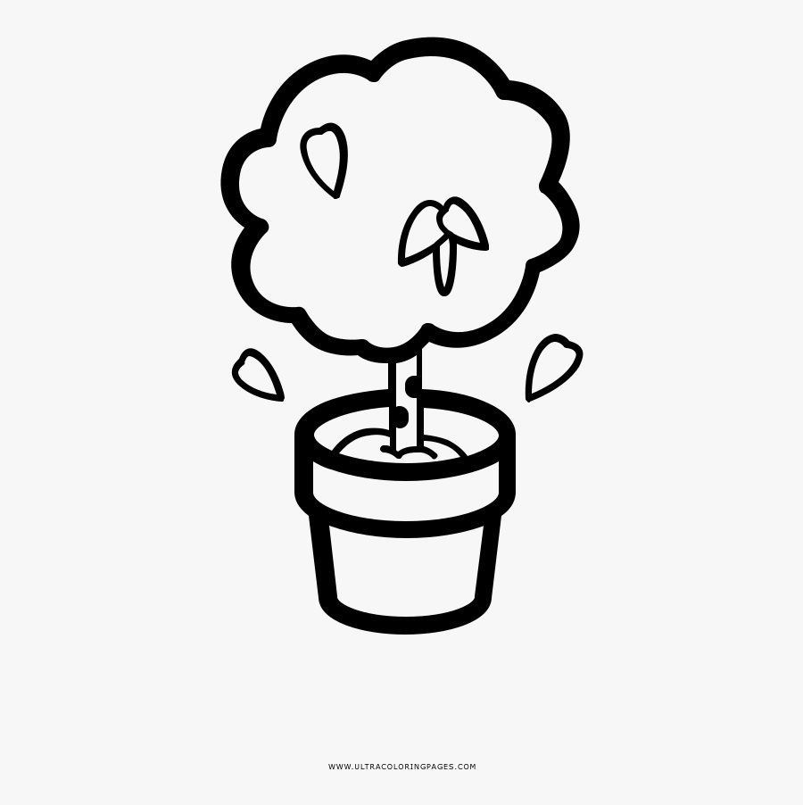 Birch Tree In A Pot Coloring Page - Apple Tree In A Pot Cartoon, Transparent Clipart