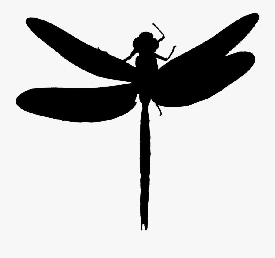 Dragonfly Insect Clip Art Line Silhouette - Dragonflies Silhouette, Transparent Clipart
