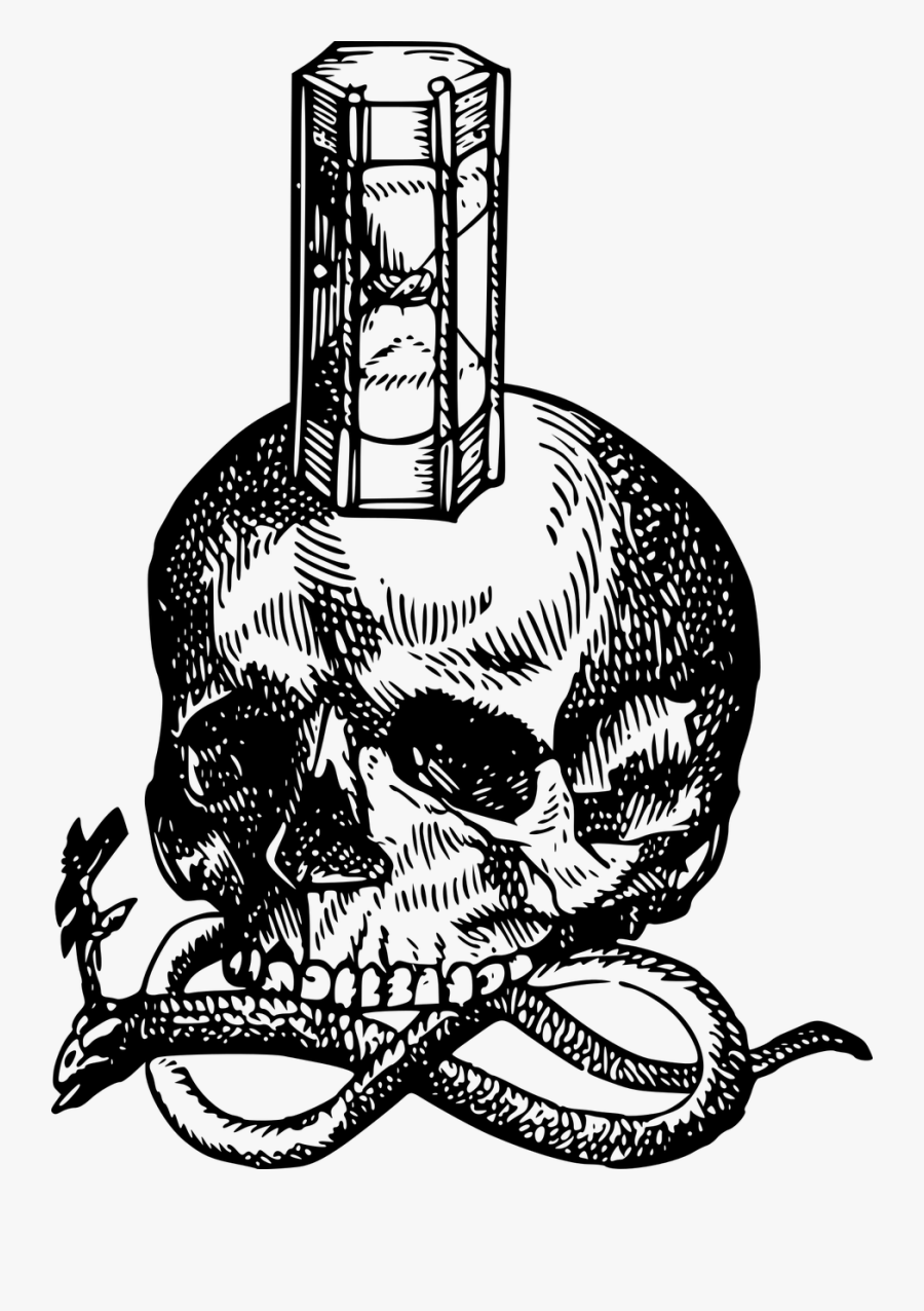 Skull Drawing Transparent Png Clipart Free Download - Skull Snake Hourglass, Transparent Clipart