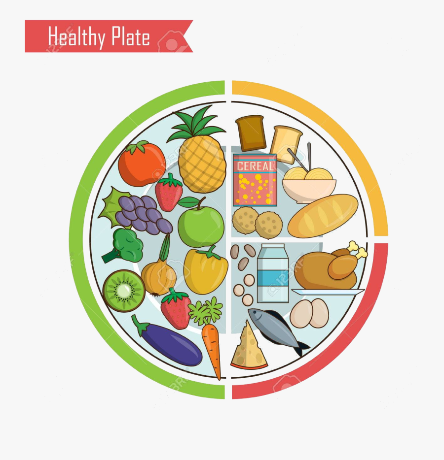 Healthy Food Infographic Chart Illustration Of Plate Healthy Eating Kids Free Transparent Clipart Clipartkey