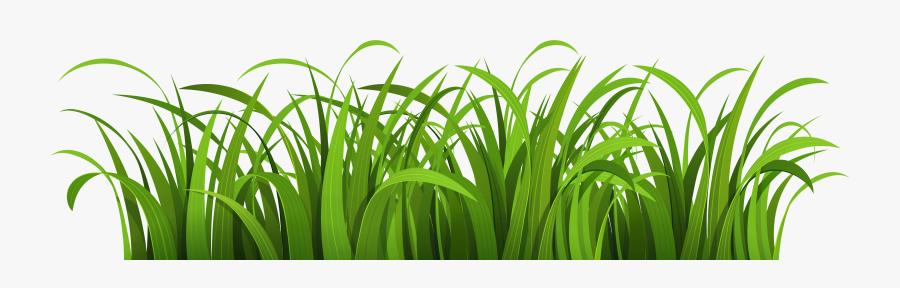 Nature Clipart Png Image - Cartoon Grass Transparent Background, Transparent Clipart
