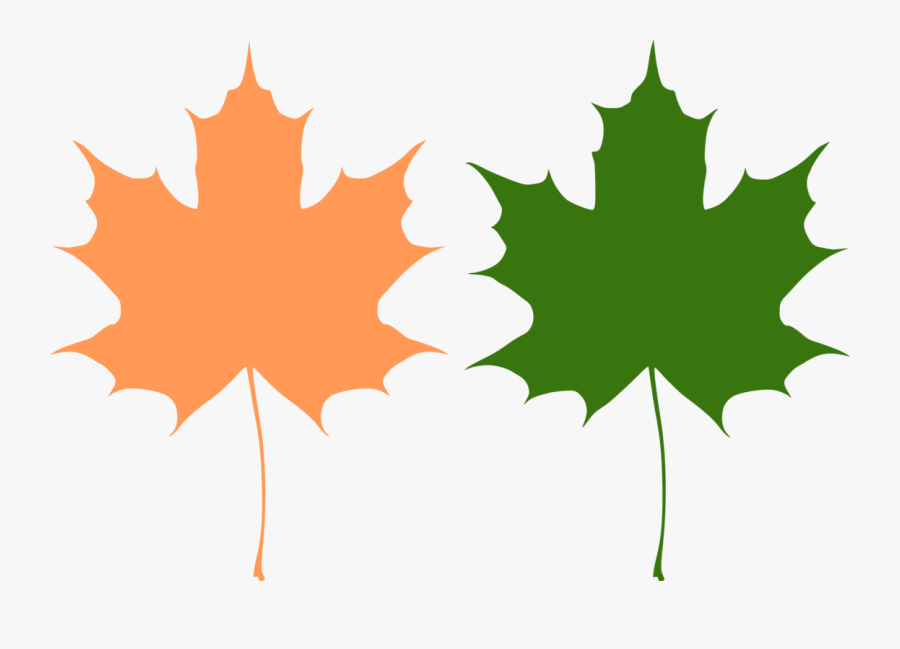 Maple Leaves - Maple Leaf Free Vector, Transparent Clipart