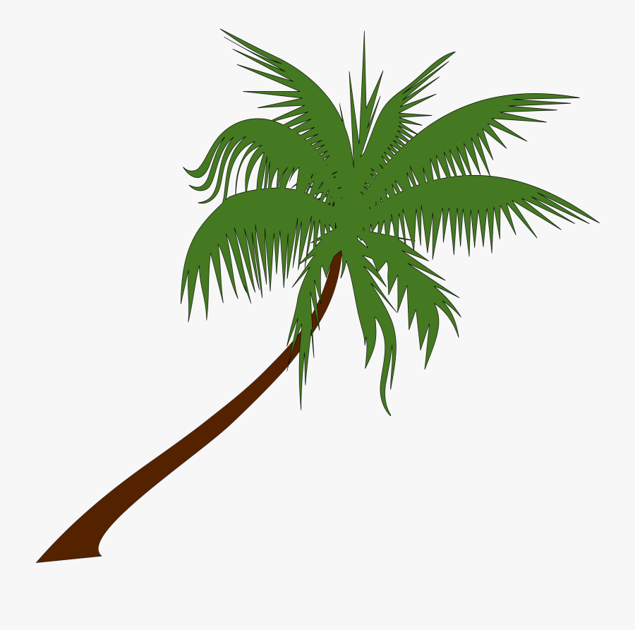 sunset clipart coconut tree pohon kelapa vektor png free transparent clipart clipartkey sunset clipart coconut tree pohon