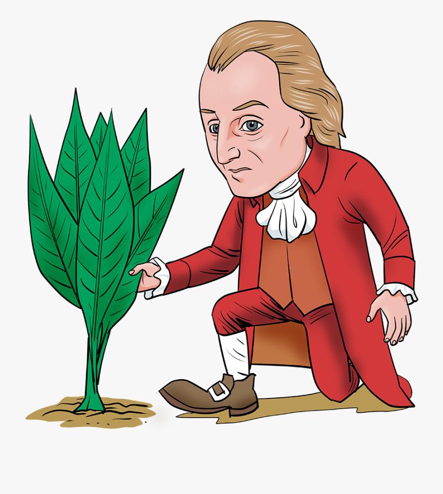 George Washington Clipart At Getdrawings - George Washington Cartoon Images As A Farmer, Transparent Clipart