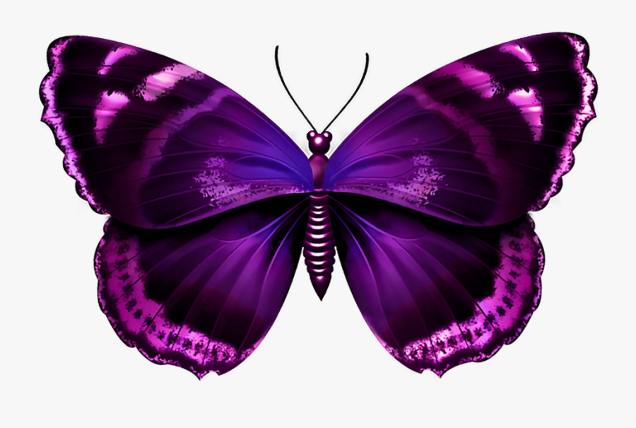 Download Clipart Png Photo - Purple And Pink Butterflies, Transparent Clipart
