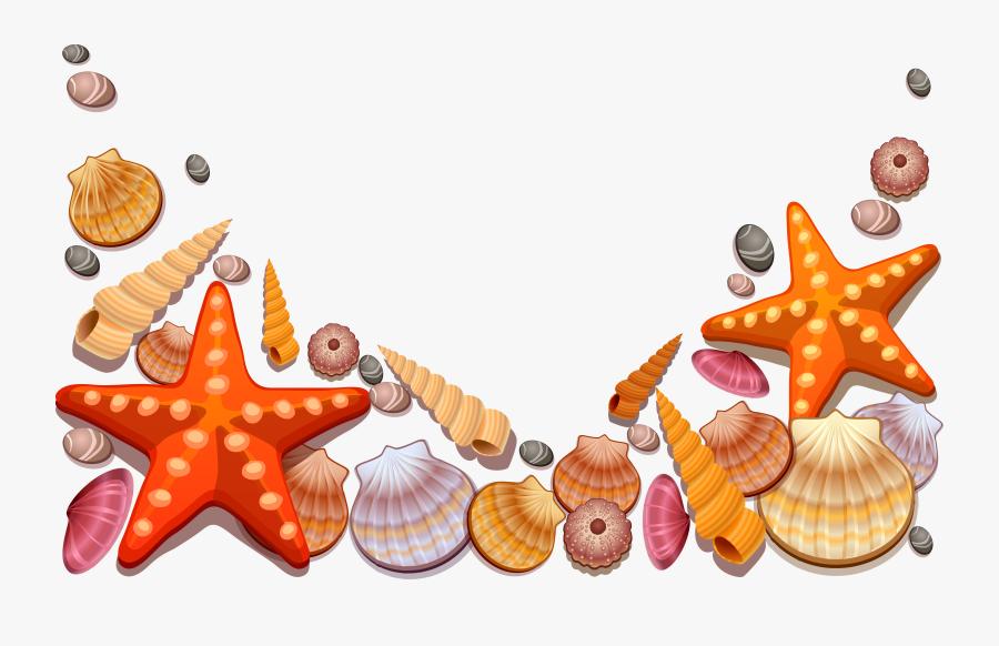 Clipart Shells Starfish - Sea Shells Vector Png, Transparent Clipart
