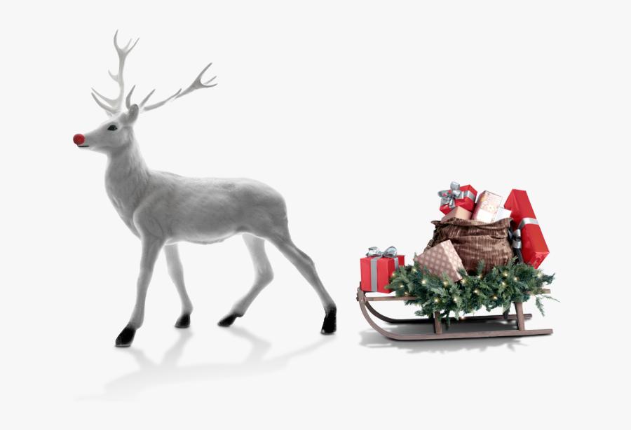 Transparent Christmas Deer Png - Santa Claus's Reindeer, Transparent Clipart
