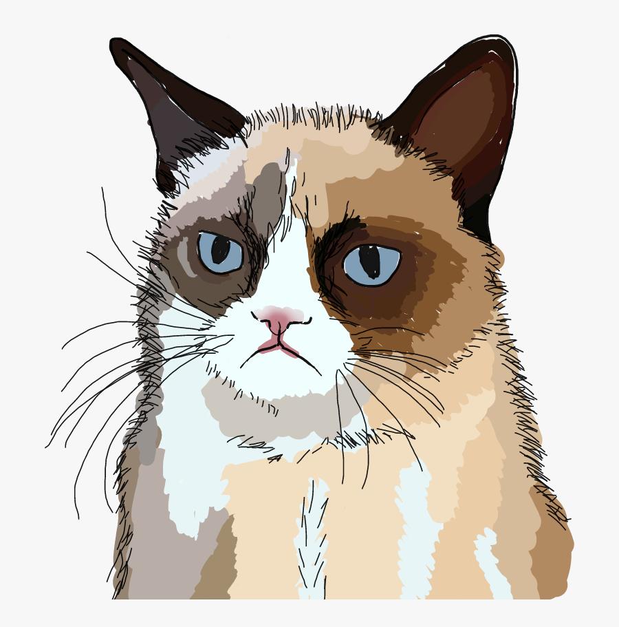#freetoedit #grumpy #cat #grumpycat #drawing - Grumpy Cat, Transparent Clipart