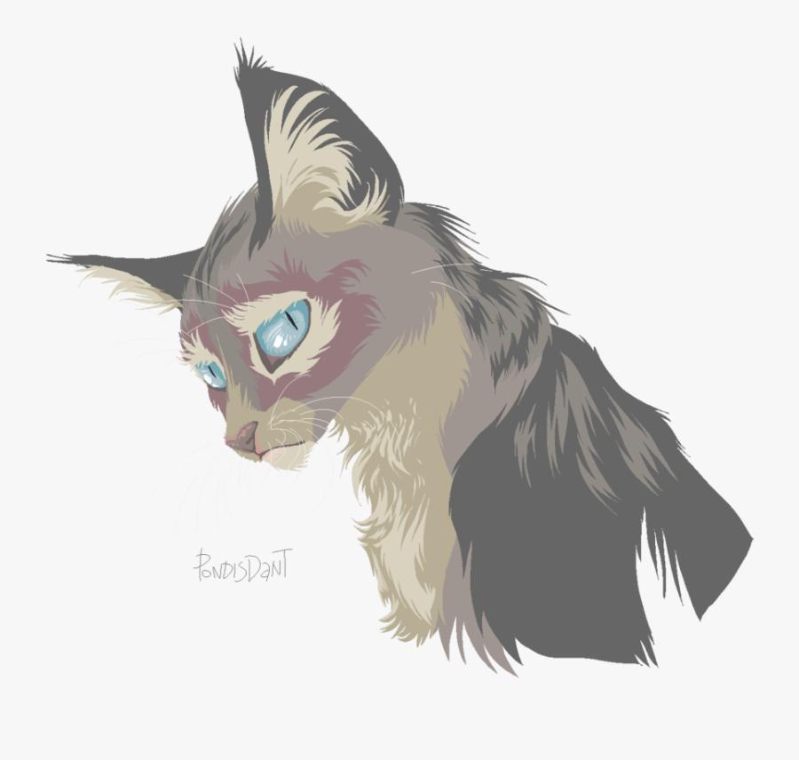 Kitten Whiskers Cat Drawing Art - Kitten, Transparent Clipart
