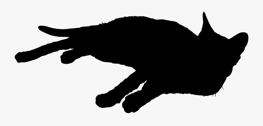 Black Cat Whiskers Silhouette Sticker - Illustration, Transparent Clipart