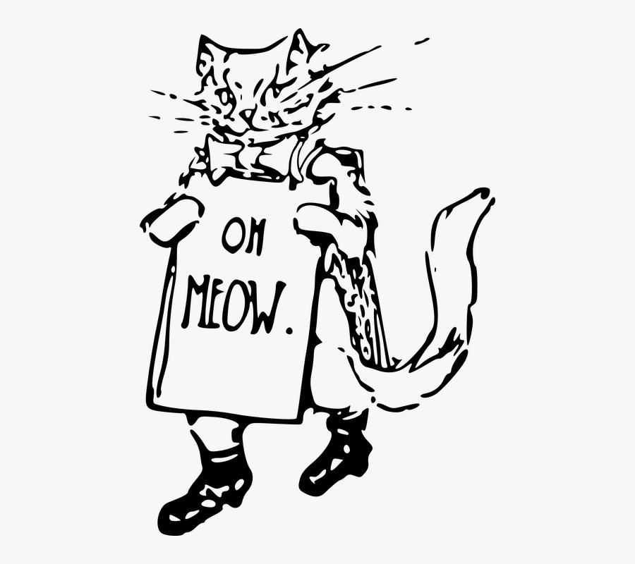 Cat, Kitten, Holding, Walking, Whiskers - Kitten, Transparent Clipart