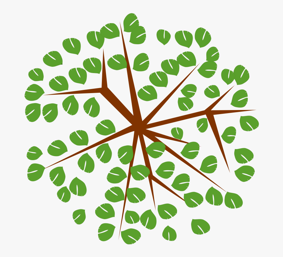 Tree Top View Icon Png Transparent Cartoons Cartoon Tree From Top Free Transparent Clipart Clipartkey Download free tree cartoon vectors and other types of tree cartoon graphics and clipart at pink and burgundy vector cartoon tree with lovely heart shaped leaves set on a pink gradient background. tree top view icon png transparent