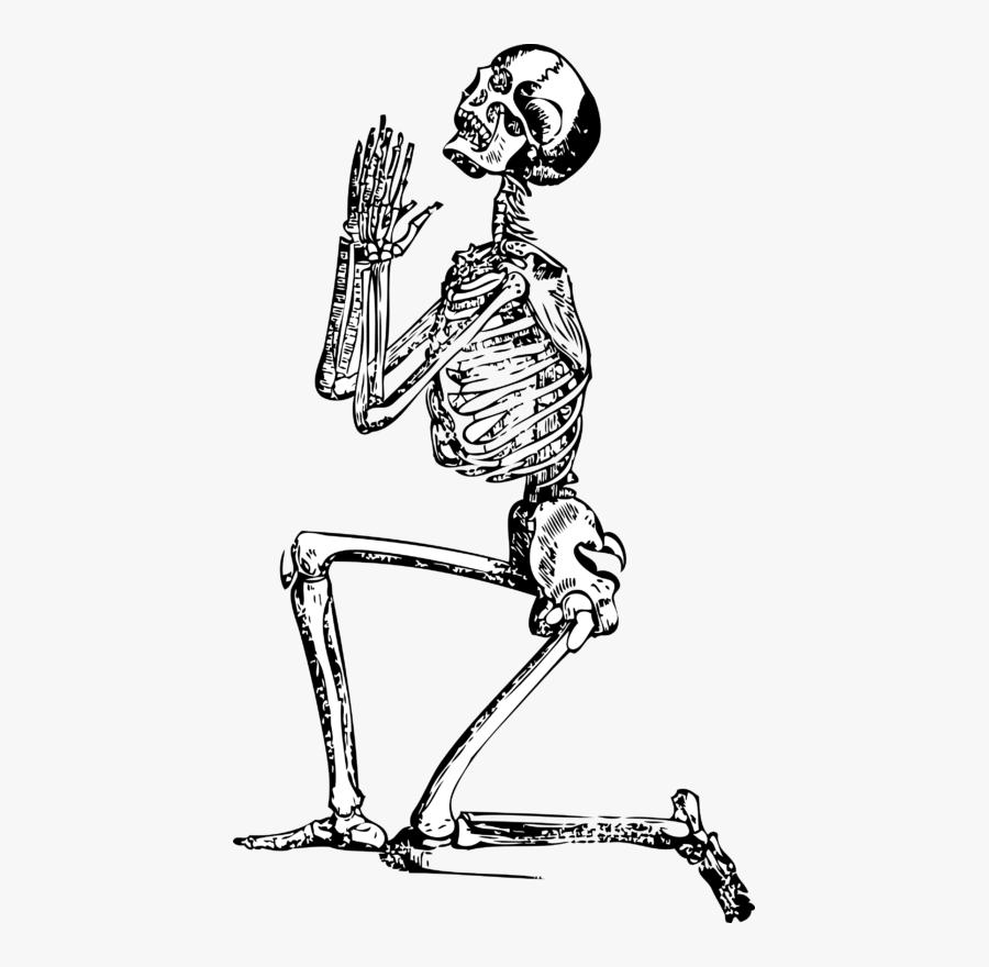 Transparent Funny Skeleton Png - Skeleton Drawing, Transparent Clipart