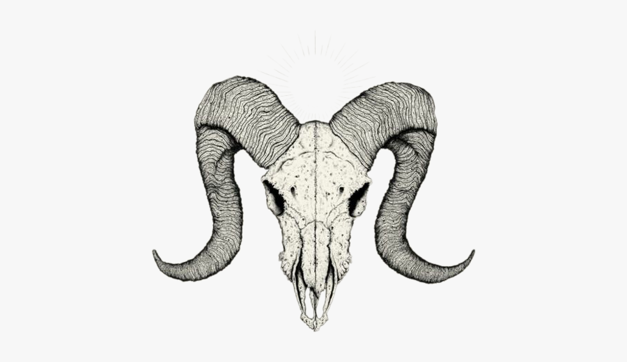 Clip Art Goat Skull Tattoo - Easy Goat Skull Drawing, Transparent Clipart