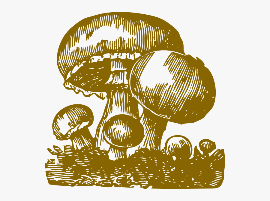 Mushroom-miri Svg Clip Arts - Gambar Jamur Kartun Keren, Transparent Clipart