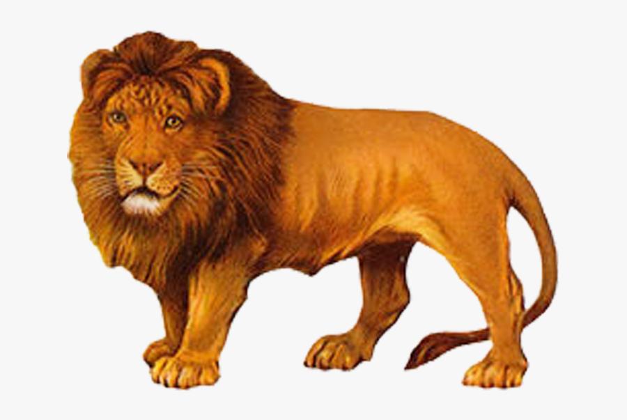 Lion Painting Png, Transparent Clipart