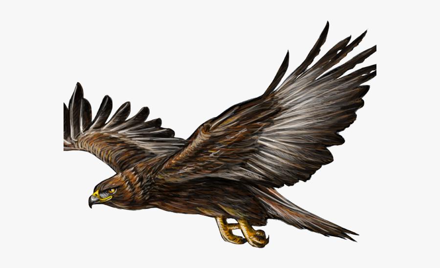 Golden Eagle Flying Png, Transparent Clipart