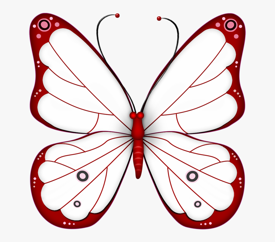 ‿✿⁀butterflies‿✿⁀ Butterfly Drawing, Butterfly Fairy, - Transparent Background Butterfly Clipart, Transparent Clipart