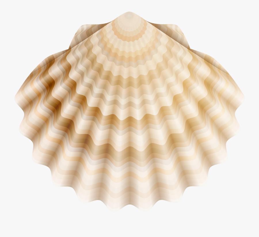 Realistic Shell Png Clip Art, Transparent Clipart