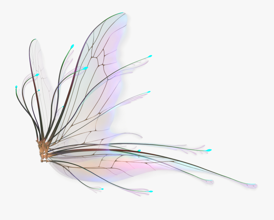 Fairy Wings Png Hd - Realistic Fairy Wings Png, Transparent Clipart