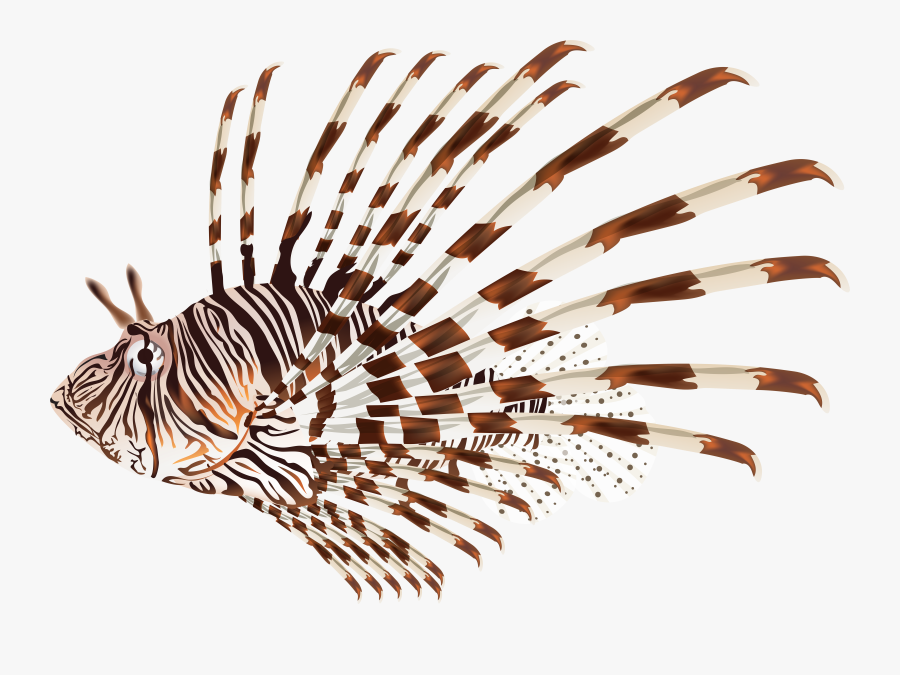 Fish Clipart Clear Background - Lionfish Png, Transparent Clipart