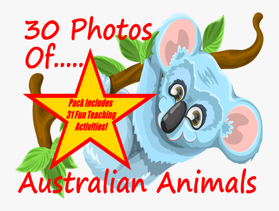Photos And Images Of Australian Animals - Climb A Tree Png Clipart, Transparent Clipart