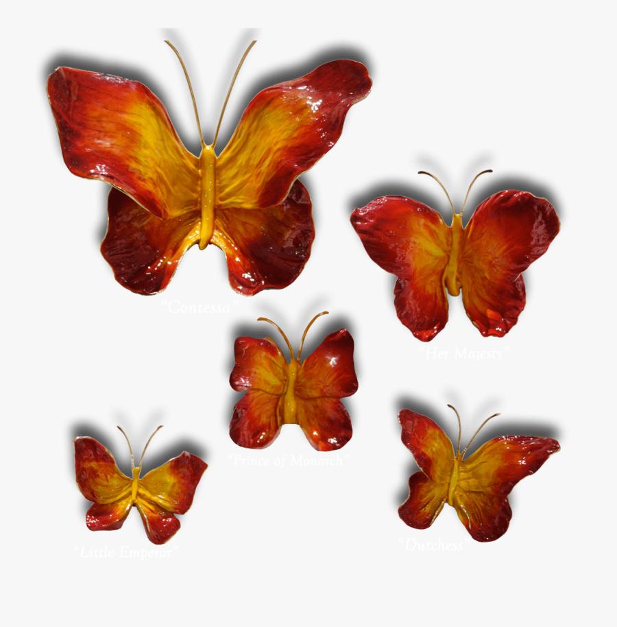 Clip Art Butterflies Exposures International Gallery - Brush-footed Butterfly, Transparent Clipart
