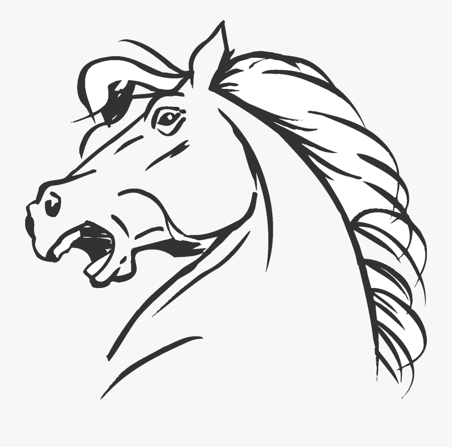 Clip Art Collection Of Free Drawing - Drawing Horse Head, Transparent Clipart