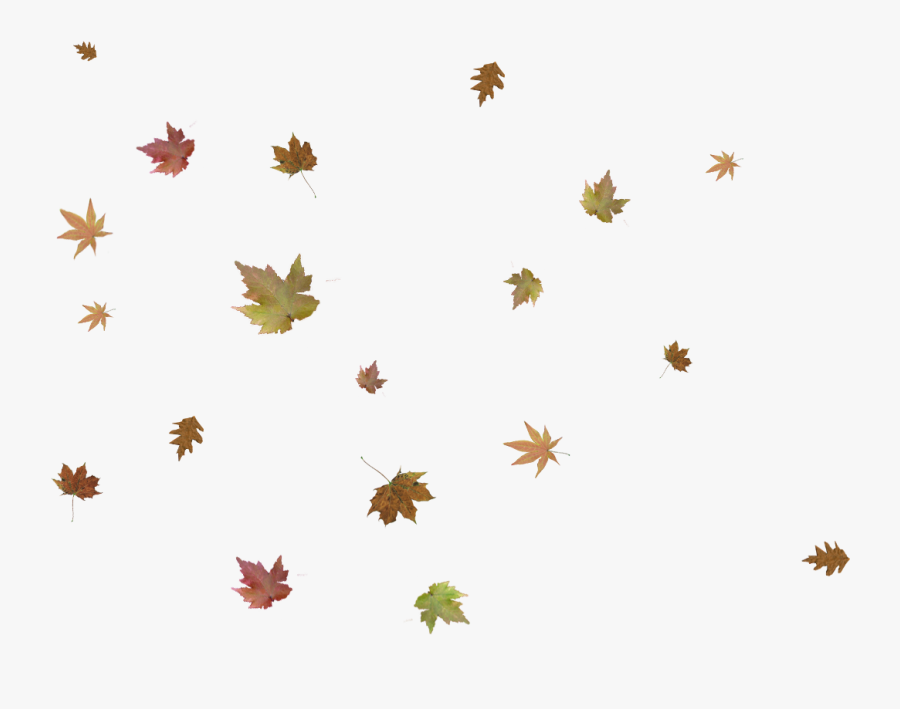 Falling Fall Leaves Png, Transparent Clipart