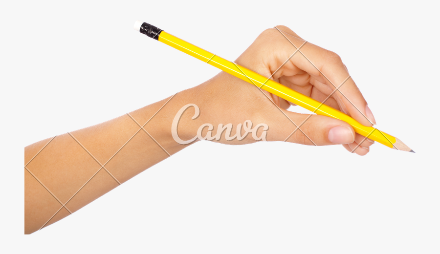 Pencil,writing Instrument Pen,writing Implement,drawing - Transparent Background Pencil In Hand, Transparent Clipart