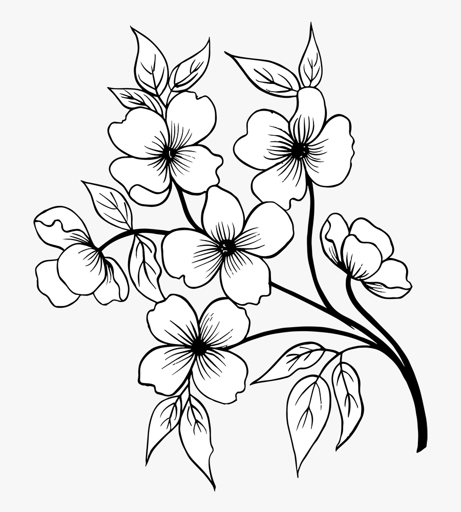Flower Hand Drawn Png, Transparent Clipart