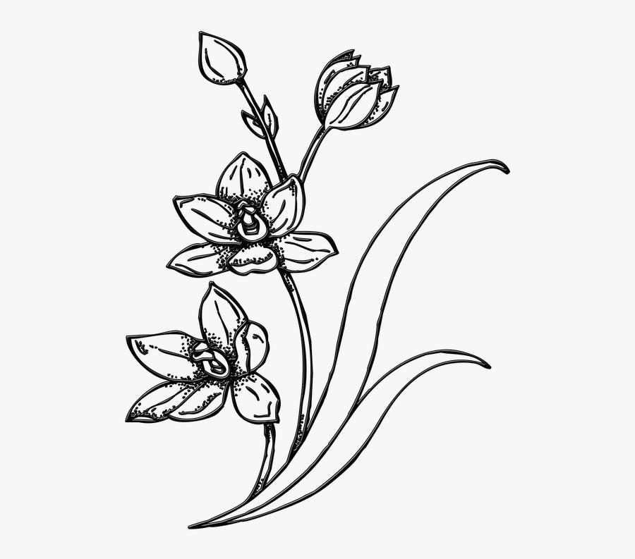 Flowers, Garden, Plant, Spring, Floral, Bouquet - Gambar Ilustrasi Bunga, Transparent Clipart