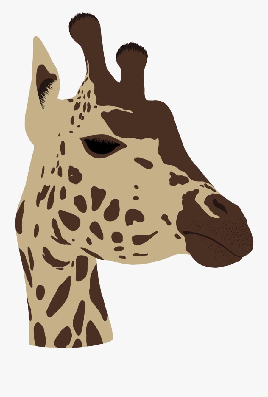 Transparent Giraffe Head Png - Giraffe, Transparent Clipart