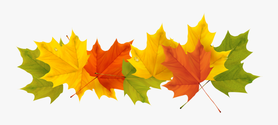 Transparent Fall Leaf Clipart No Background - Transparent Background Fall Leaves Clip Art, Transparent Clipart