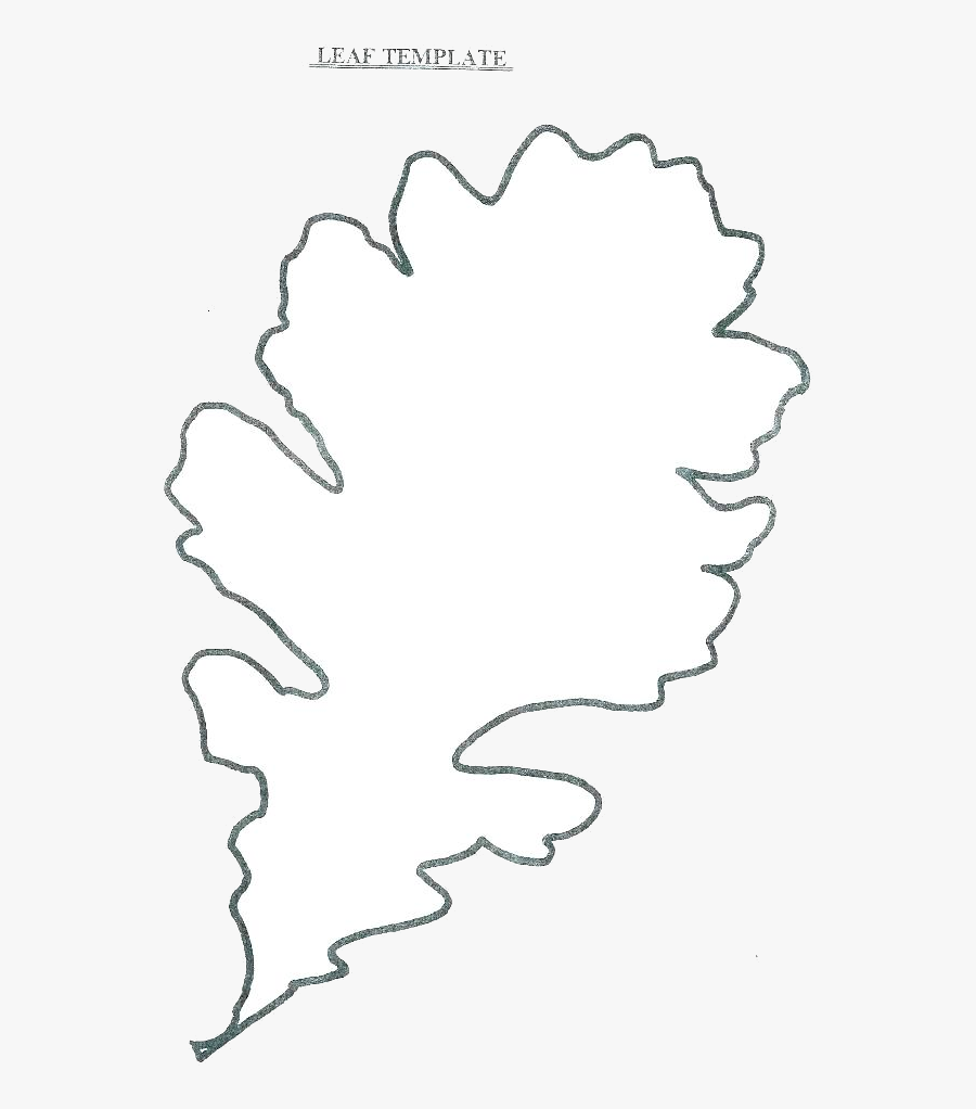 Leaf Outline Leaves Fall Clip Art Gallery Transparent - Leaves Printable, Transparent Clipart