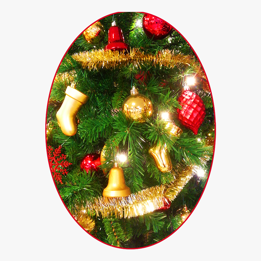 Christmas Pictures Decoration - Christmas Ornament, Transparent Clipart