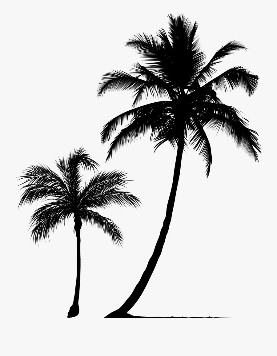 Arecaceae Tree Silhouette Clip Art - Black Palm Tree Png, Transparent Clipart